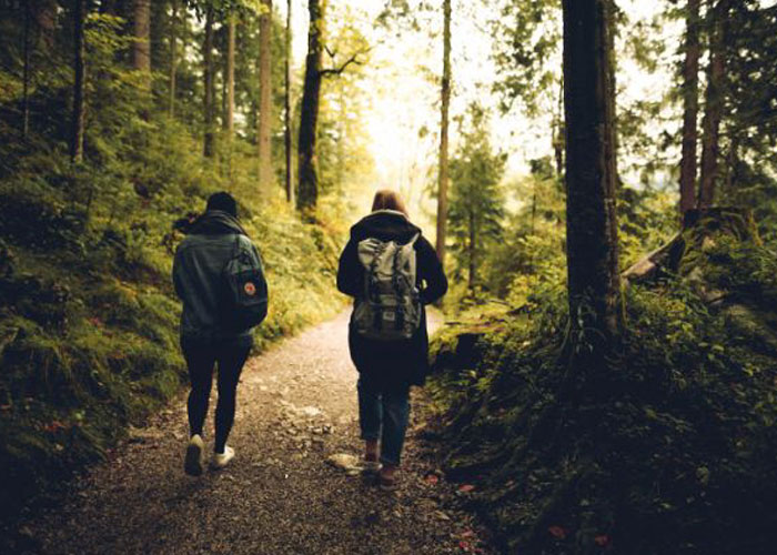 Forest Bathing: The Trendiest Wellness Concept Among The Spa Resorts